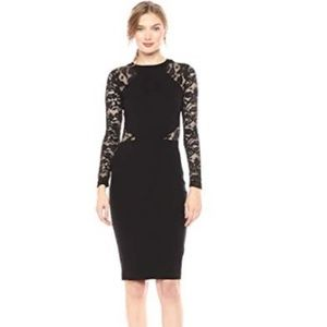 French Connection Viven Bodycon Semi Sheer Dress